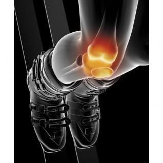 Knieband voor boardsporten Epitact PhysioStrap